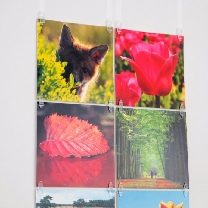 20 Stas Picture Hits En 2 Stas Pet Strips 50 Cm